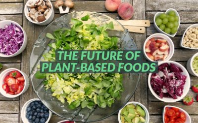 The future of plant-based foods